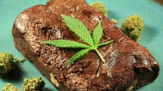 marijuana edibles industry