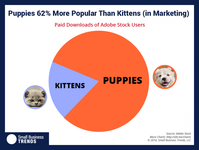 puppies in marketing