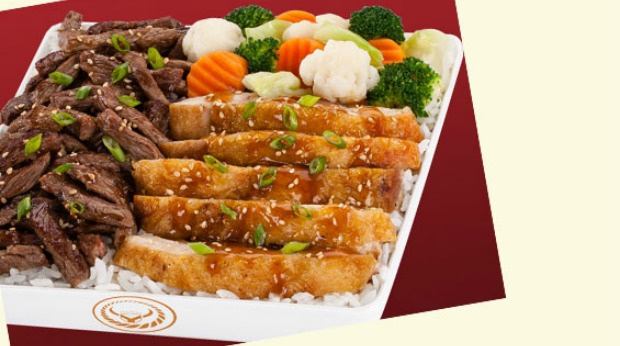 yoshinoya sushi franchises