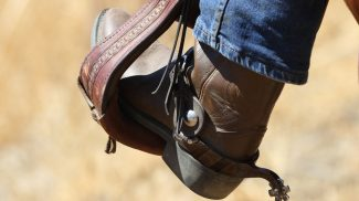 benefits of bootstrapping