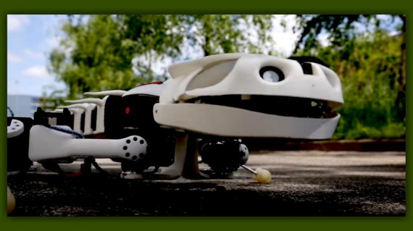 Creepy Bio Inspired Salamander-like Pleurobot Could Have Many Applications