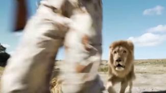 Fake Videos Show Formula for Viral Success (Watch)