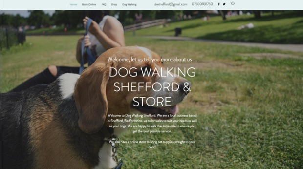 AI Web Design - Dog Walking Shefford & Store