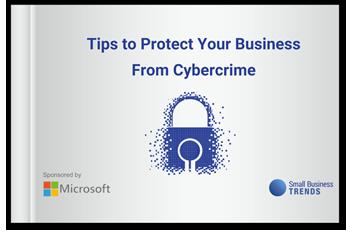 Microsoft Cybercrime eBook