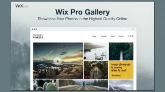 Wix Pro Gallery gives Professional Photographers Their Own Photography Website Builder