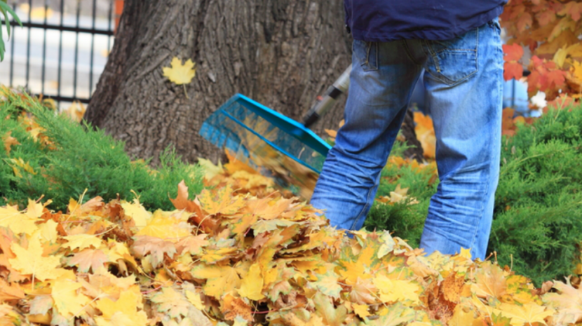 9 Best Tips on How to Engage Employees This Fall