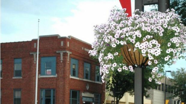 Main Street Programs and Organization Across the US - Wilmar Downtown Development, Inc.