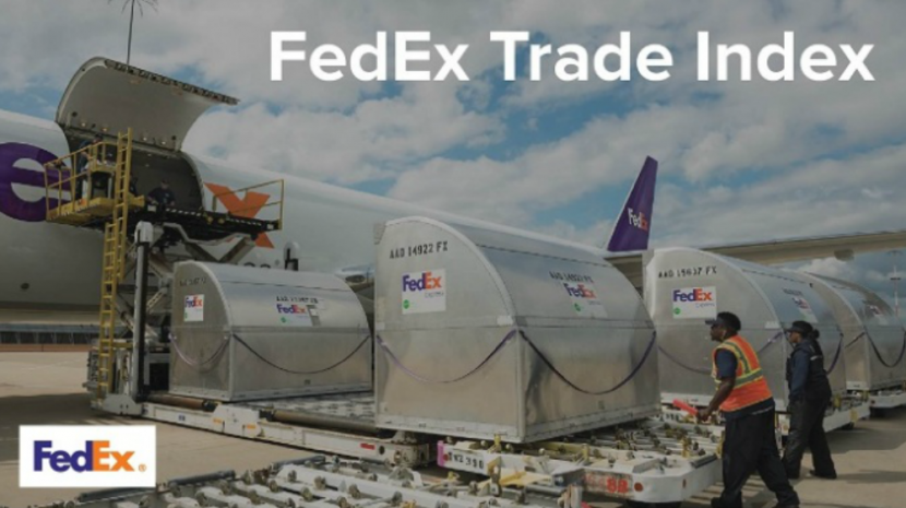 Revenue of International Small Businesses See More Growth, Says FedEx Index