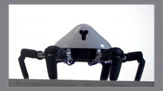The Vincross HEXA: Your New Six-Legged Robot Friend