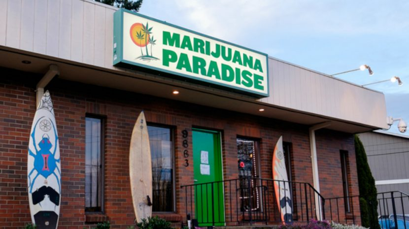 Legalized marijuana companies continue to thrive in the face of huge restrictions. The challenges facing the marijuana industry are typical in new niches.