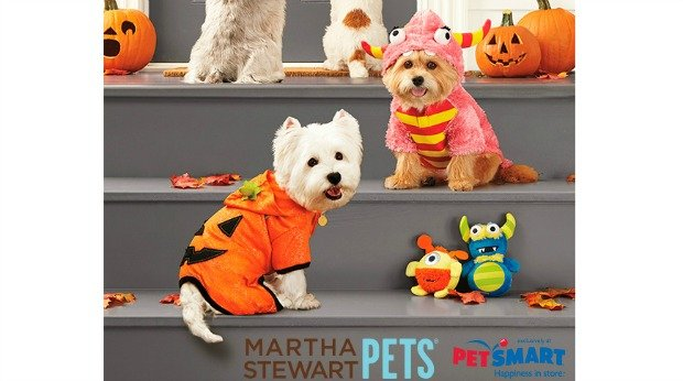 20 Examples of Great Halloween Advertising Inspiration - Martha Stewart Pets - Halloween advertising - Halloween ads - advertising Halloween - Halloween advertising ideas - Halloween advertising campaigns