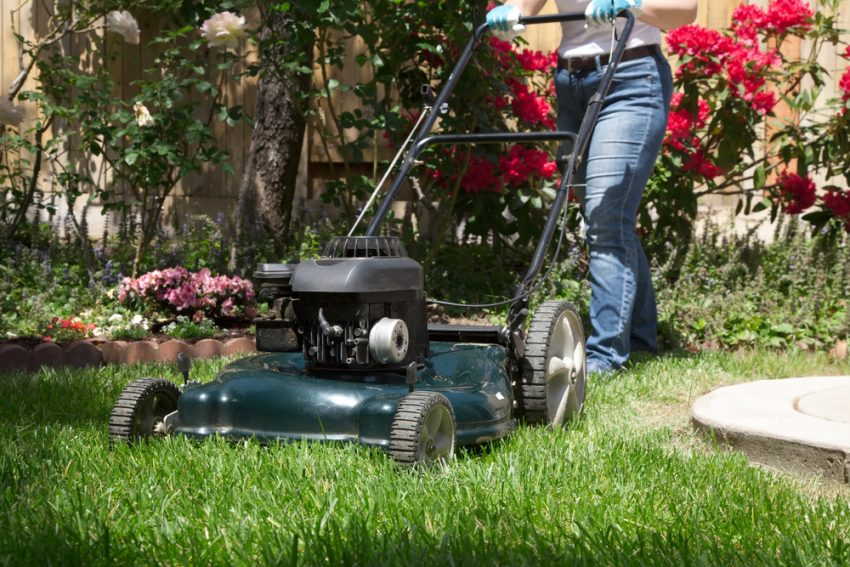 50 Business Ideas for Moms - Lawn Care