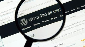 Websites of all kinds are becoming more vulnerable to cyber attacks. The latest attack, a WordPress hacked redirect, can get your site blacklisted or worse.