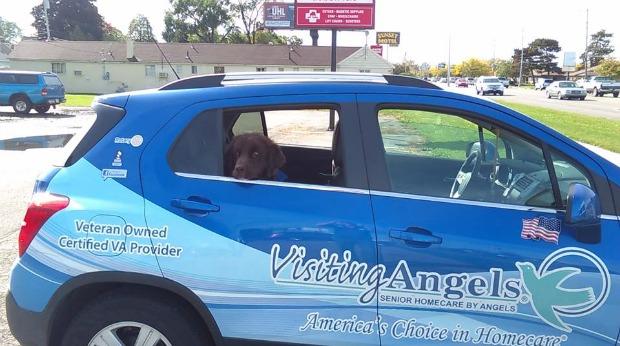 visiting-angels-3