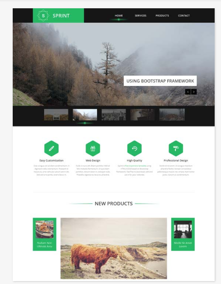 50 One Page Website Templates for Your Business - Sprint