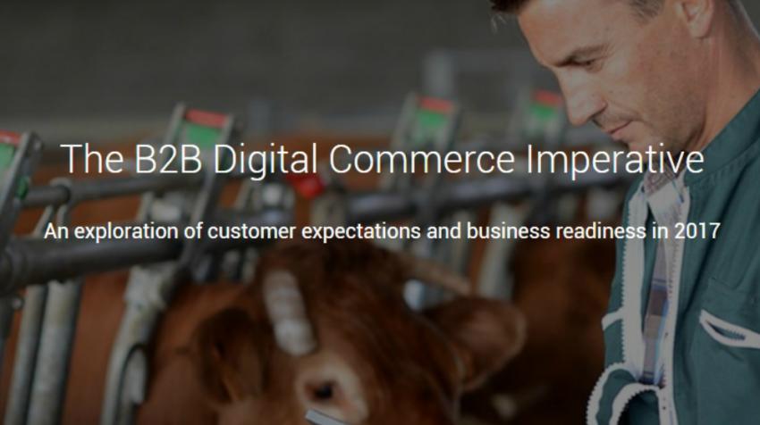 2017 b2b ecommerce trends
