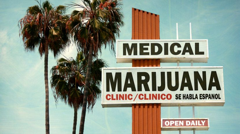 Marijuana Business Laws By State: A Complete Guide