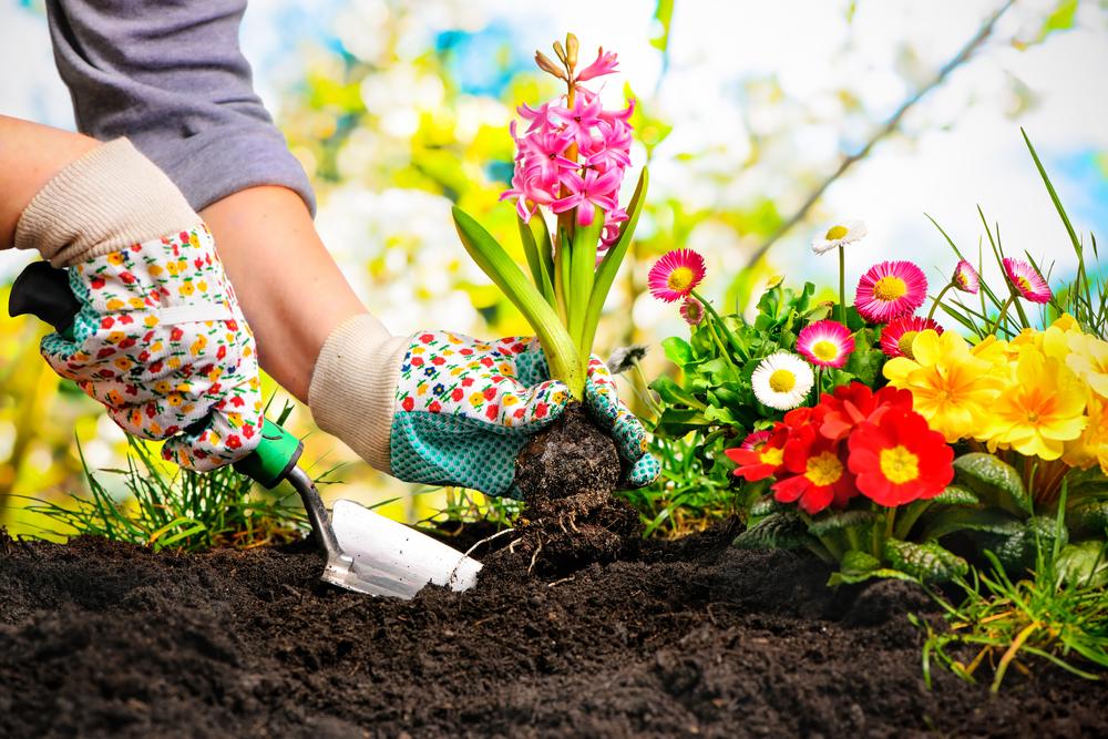 50 Backyard Business Ideas - Gardener