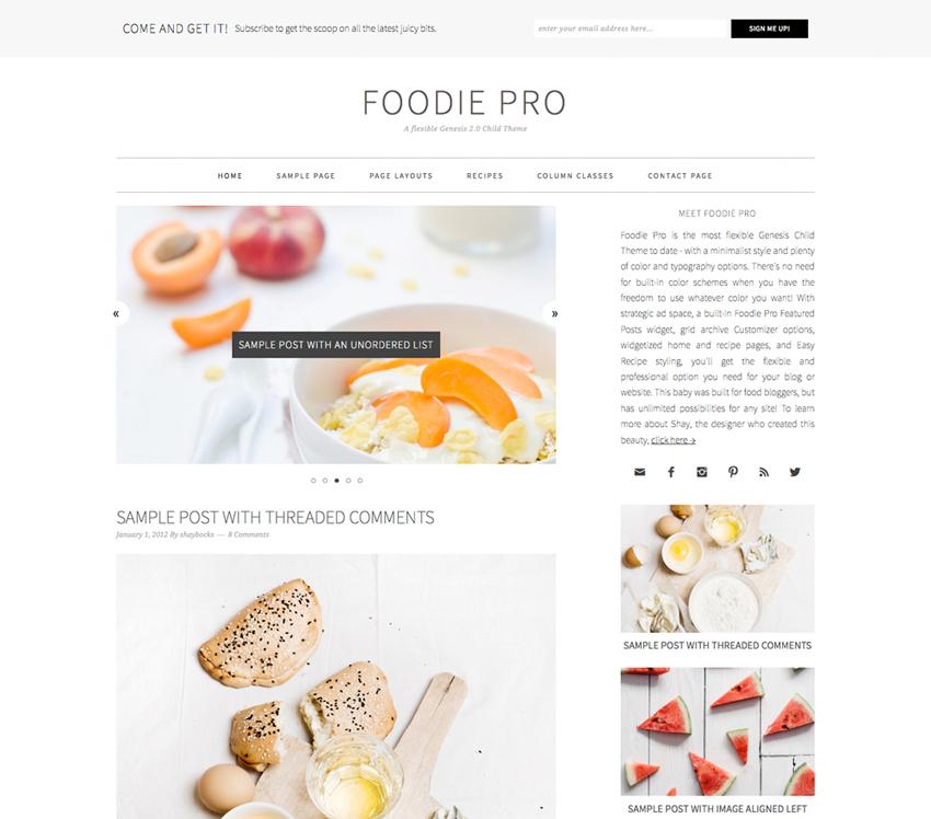 10 Most Popular WordPress Themes - Foodie Pro