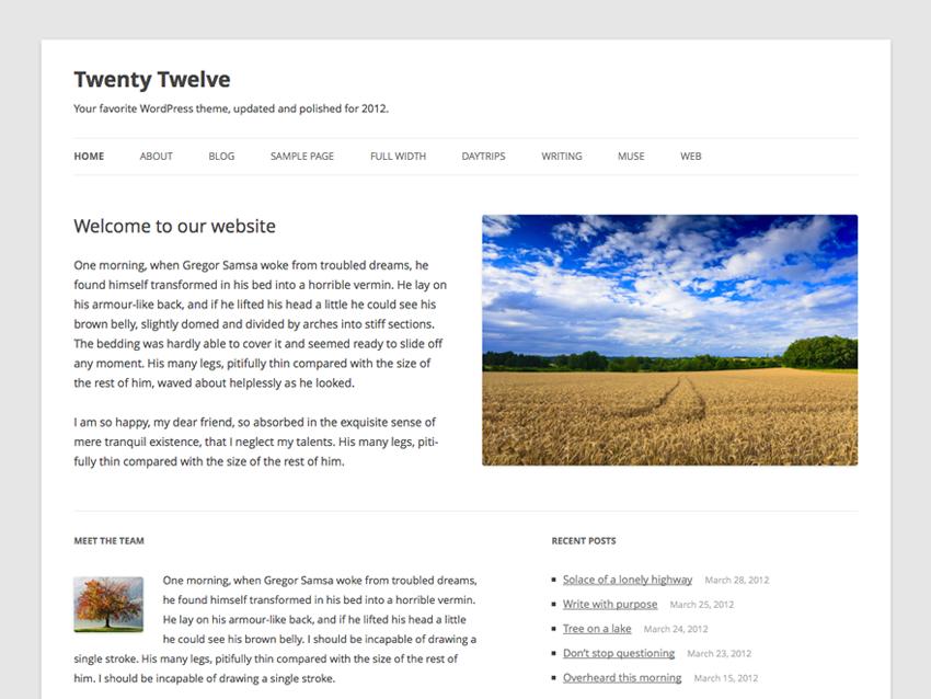 10 Most Popular WordPress Themes - Twenty Twelve