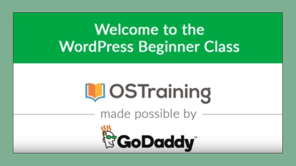 GoDaddy Sends Small Business WordPress Developers Back to