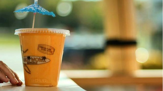 20 Healthy Food Franchises - Maui Wowi