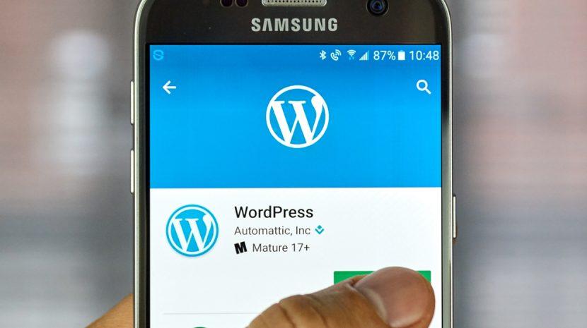10 Most Popular Wordpress Themes