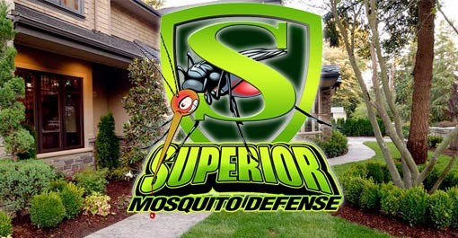 10 Pest Control Franchise Opportunities to Consider - Superior Mosquito Defense