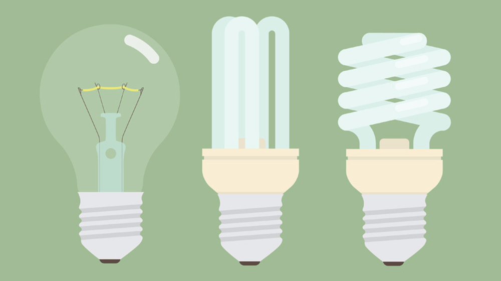 Which Light Bulb Is Best For Your Office Small Business