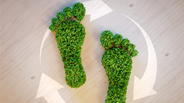 How to Reduce Your Carbon Footprint at Work