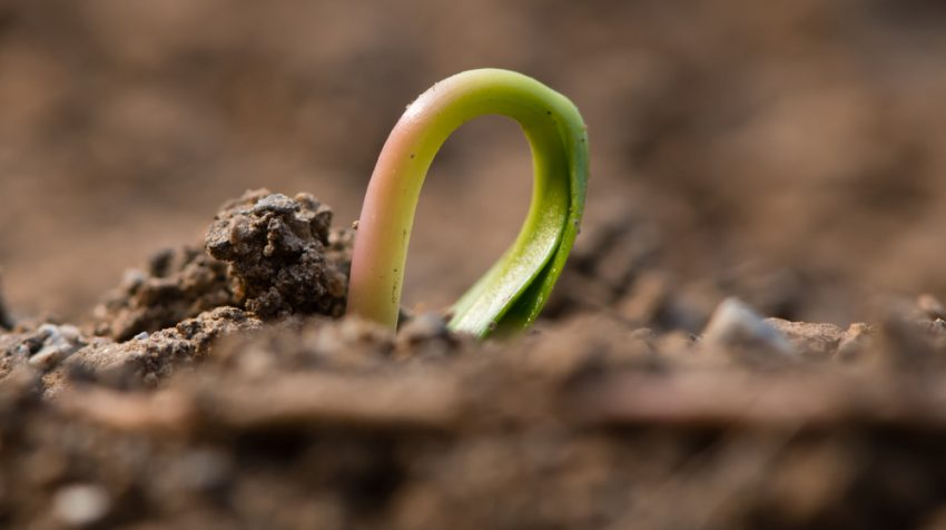 How Pre-Seed Funding is Changing