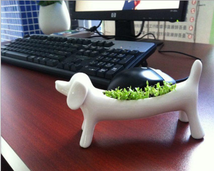 Dog Bonsai Potted Plant