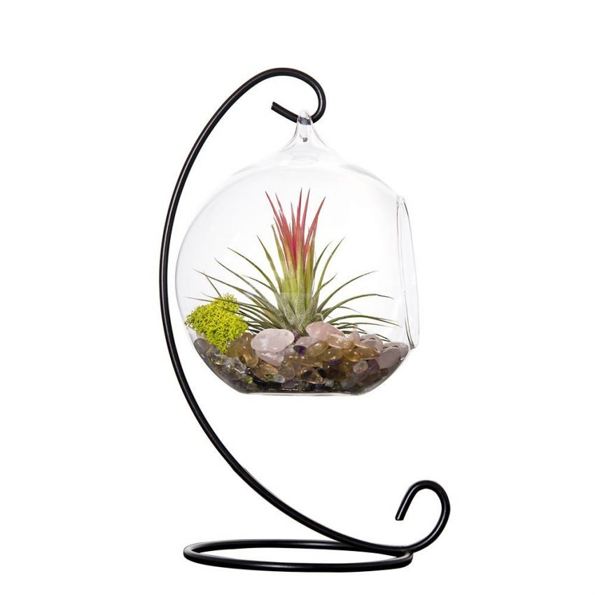Globe Terrarium With Metal Stand