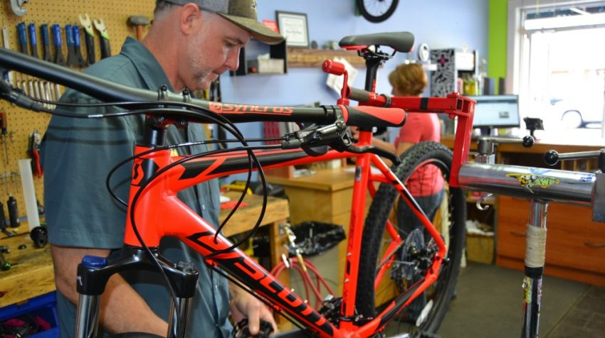 bicycle shop success story