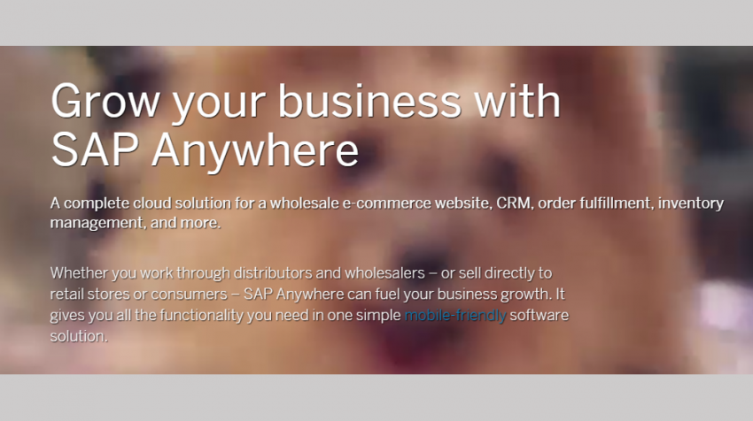 SAP for Small Business