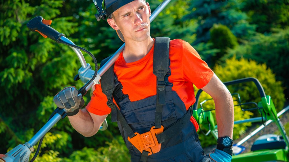 More H2-B Visas for Landscaping Needed