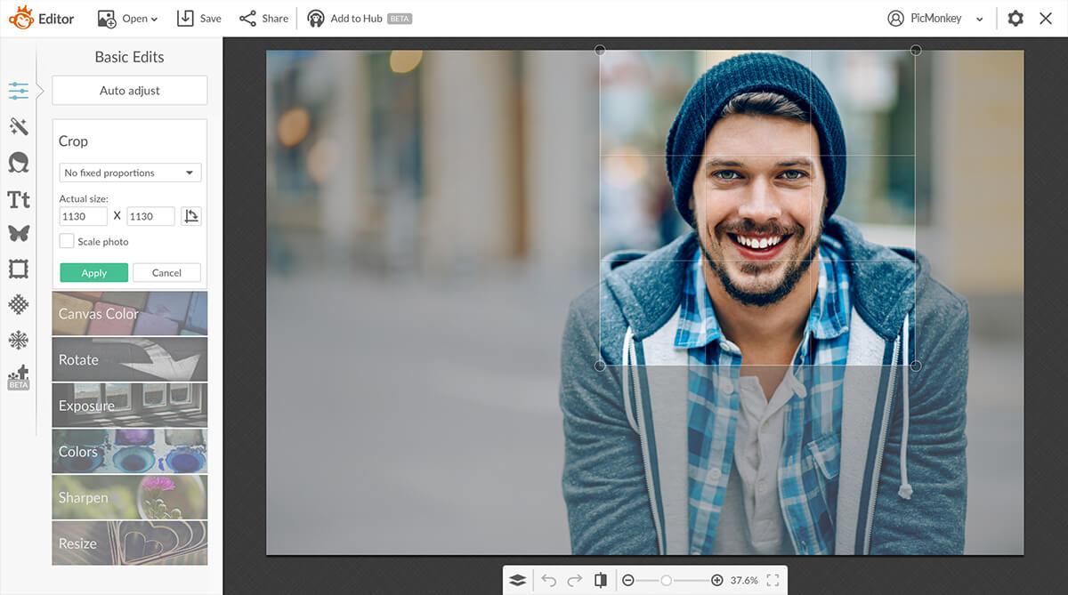 PicMonkey Review: Is PicMonkey A Good Alternative to Canva, Yes or No?