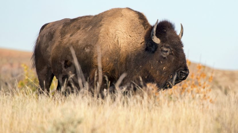 These Are the Best and Worst States to Start a Business in 2017