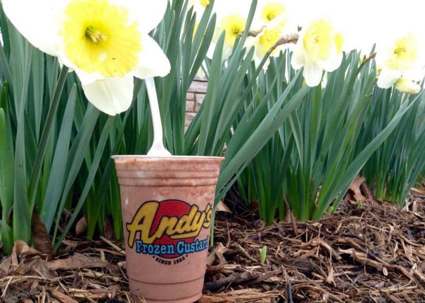 Ice Cream Franchise List - Andy's Frozen Custard