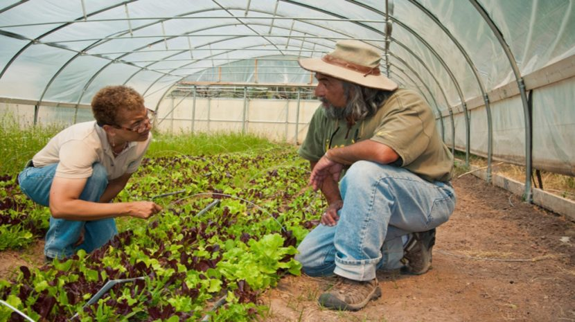 USDA and SCORE Mentorship Program to Provide Help to Farms, Ranches, and Local Rural Businesses