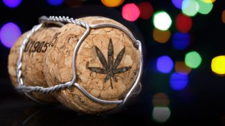 Combining Growing Marijuana and Making Wine Could Be the Latest Small Business Trend