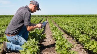 New FDA Guide Should Help Small Farmers Comply with the FSMA Produce Safety Rule