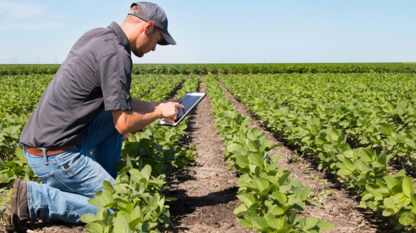 New FDA Guide Should Help Small Farmers Comply with theFSMA Produce Safety Rule