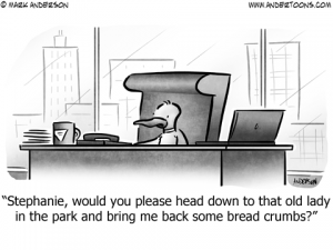 Duck Business Cartoon