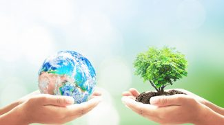 Your Company Can Make a Difference With These 20 Green Activities for Earth Day