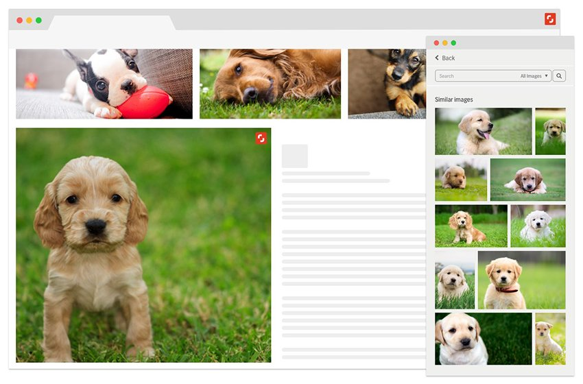 New Shutterstock Showcase Using AI to Power Its Image Library Search