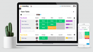 What is Monday Team Management Software and Can It Help Your Small Business?