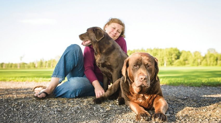 Business Evolution: Dogs Naturally Evolves from Online Magazine to Offering Courses, Products