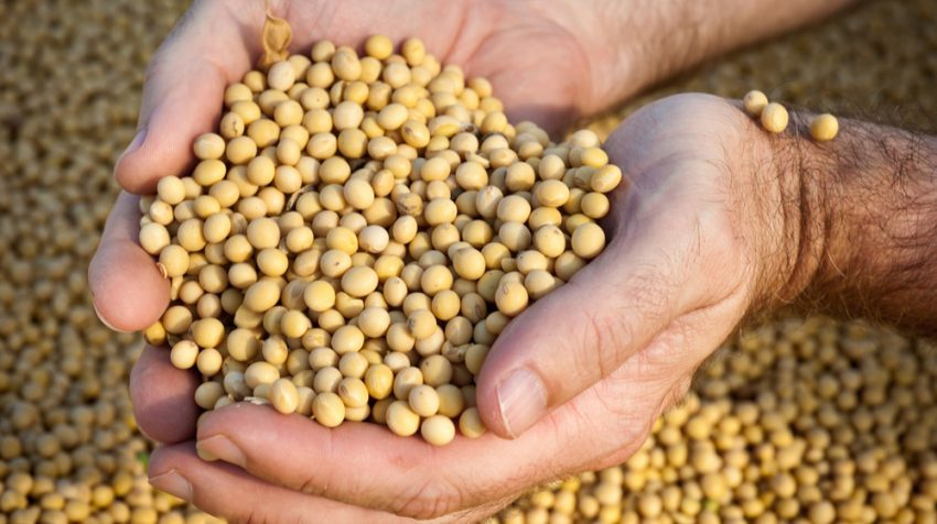 Perdue: EU agreed to buy more soybeans than market would command