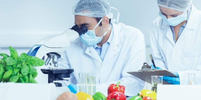 Want a Thriving Farm or Food Business? Food Safety Modernization Act Rules You MUST Know